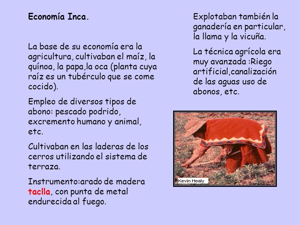 Economía Inca.