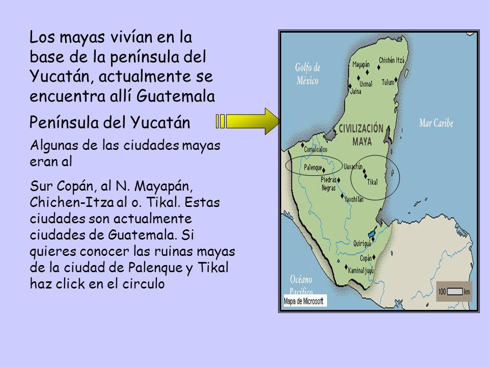 Los mayas vivían en la base de la península del Yucatán, actualmente se encuentra allí Guatemala