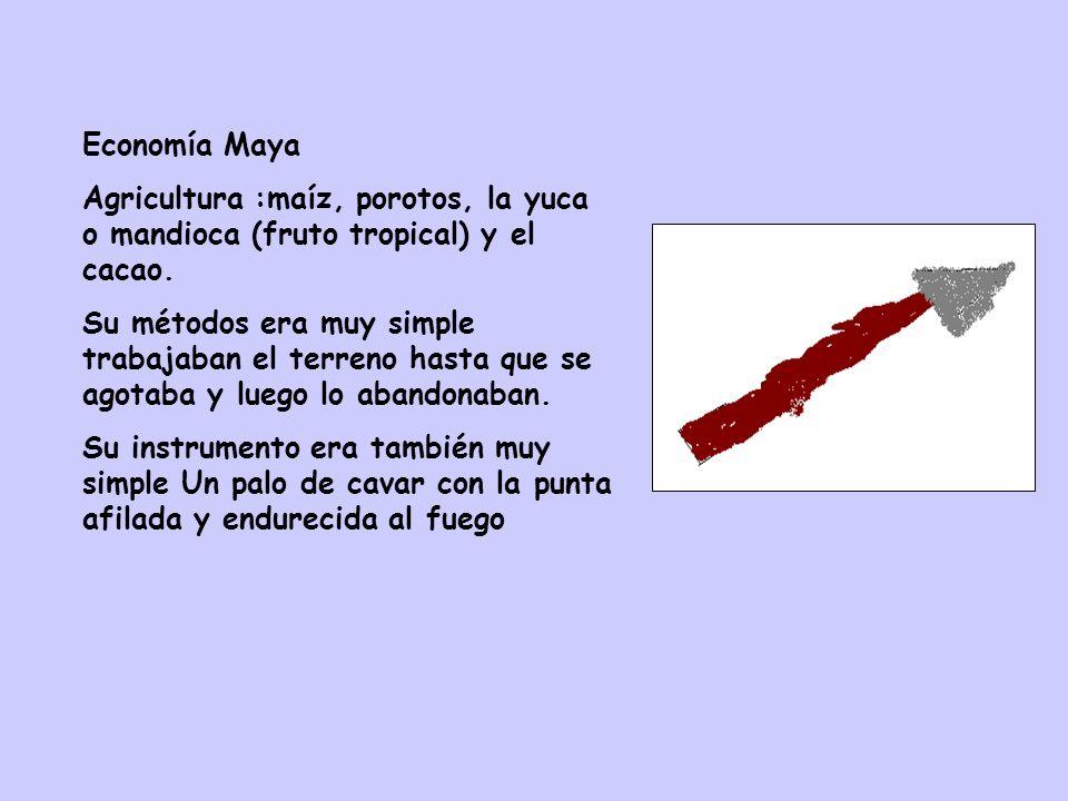 Economía MayaAgricultura :maíz, porotos, la yuca o mandioca (fruto tropical) y el cacao.