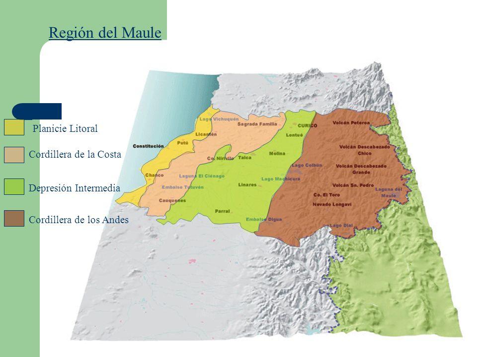 Región del Maule Planicie Litoral Cordillera de la Costa