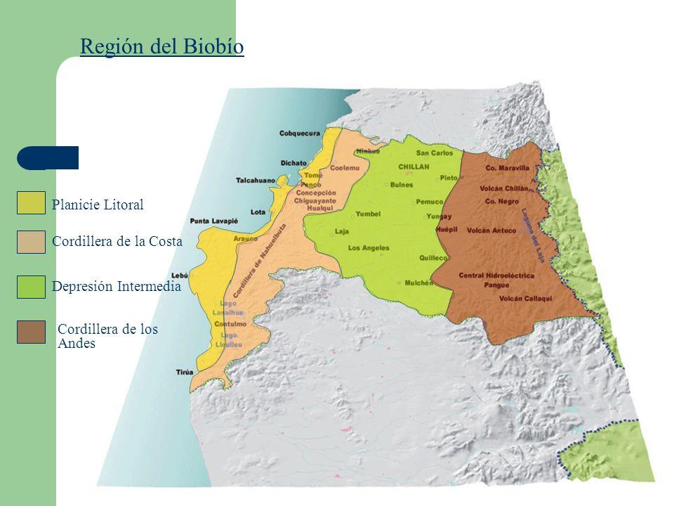 Región del Biobío Planicie Litoral Cordillera de la Costa