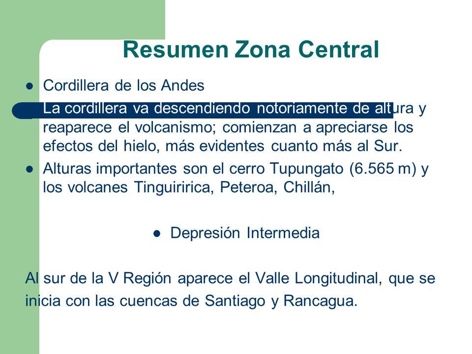 Resumen Zona Central Cordillera de los Andes