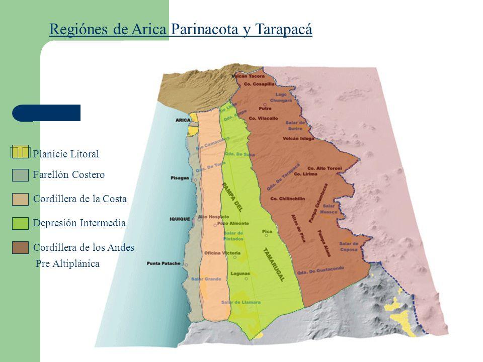 Regiónes de Arica Parinacota y Tarapacá
