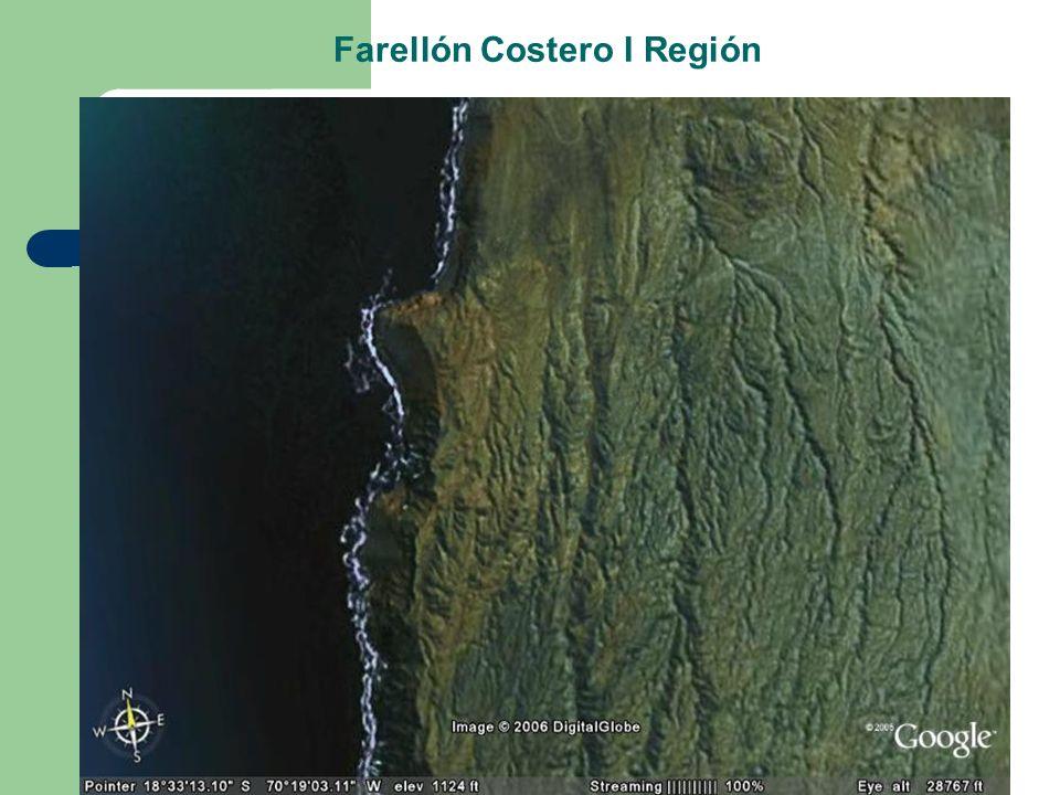 Farellón Costero I Región