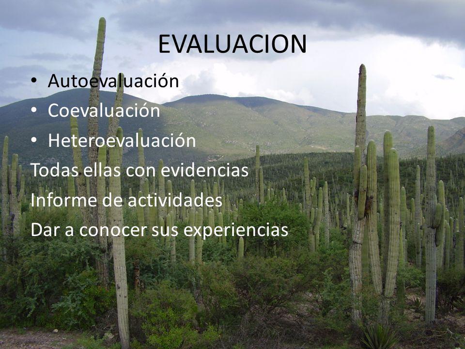 EVALUACION Autoevaluación Coevaluación Heteroevaluación