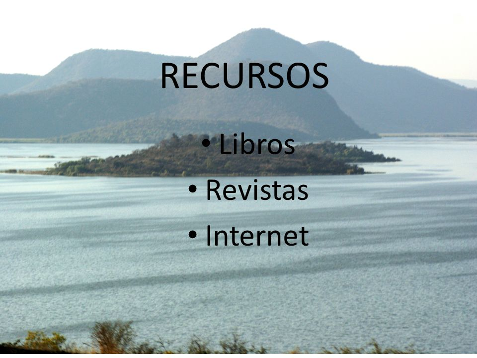 RECURSOS Libros Revistas Internet