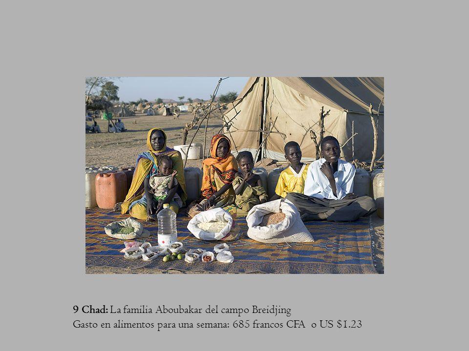 9 Chad: La familia Aboubakar del campo Breidjing Gasto en alimentos para una semana: 685 francos CFA o US $1.23