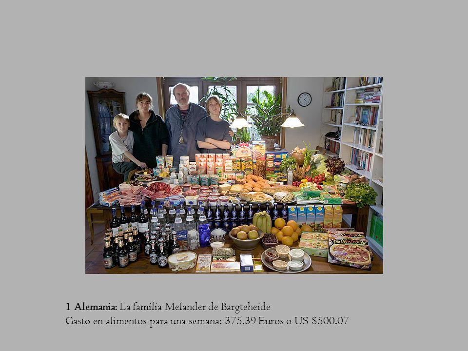 1 Alemania: La familia Melander de Bargteheide Gasto en alimentos para una semana: 375.39 Euros o US $500.07