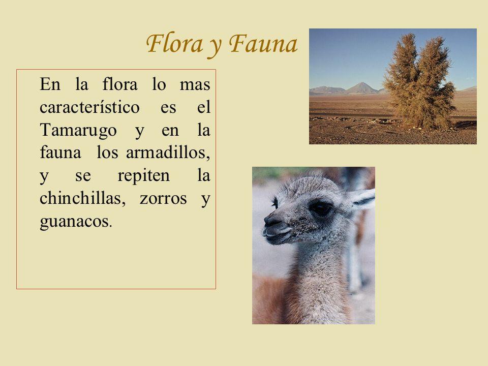 Flora y Fauna En la flora lo mas característico es el Tamarugo y en la fauna los armadillos, y se repiten la chinchillas, zorros y guanacos.