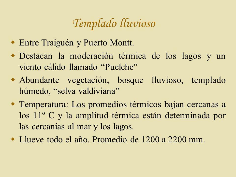 Templado lluvioso Entre Traiguén y Puerto Montt.