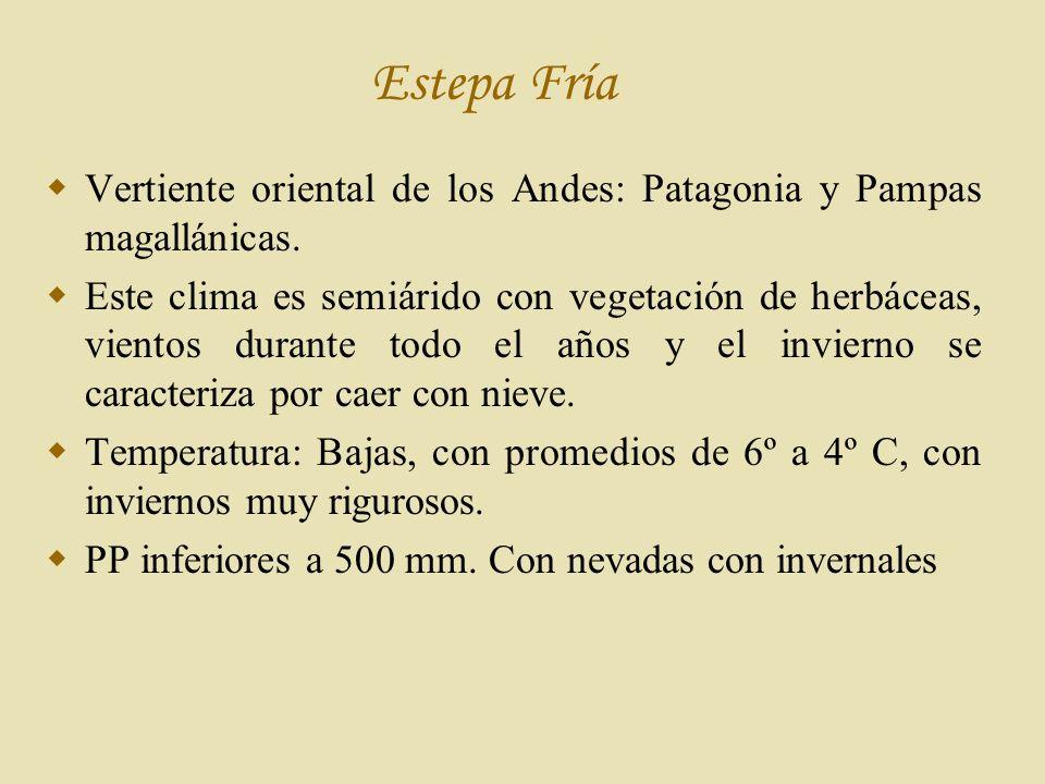 Estepa Fría Vertiente oriental de los Andes: Patagonia y Pampas magallánicas.