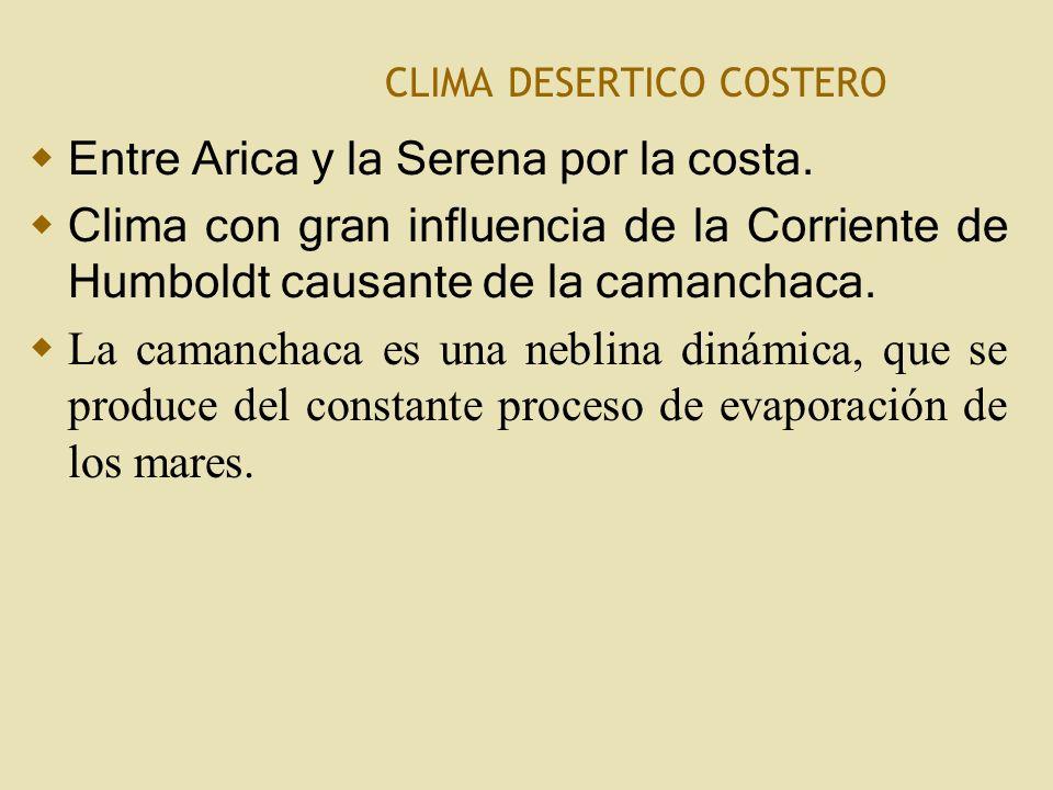 CLIMA DESERTICO COSTERO