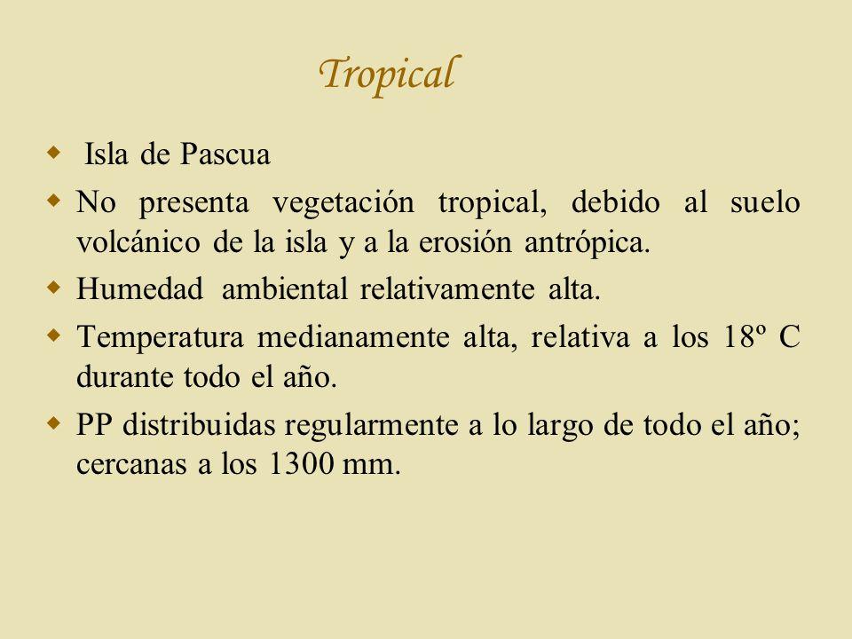 Tropical Isla de Pascua