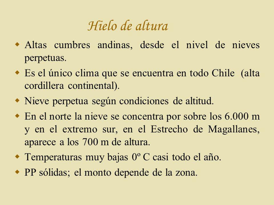 Hielo de altura Altas cumbres andinas, desde el nivel de nieves perpetuas.