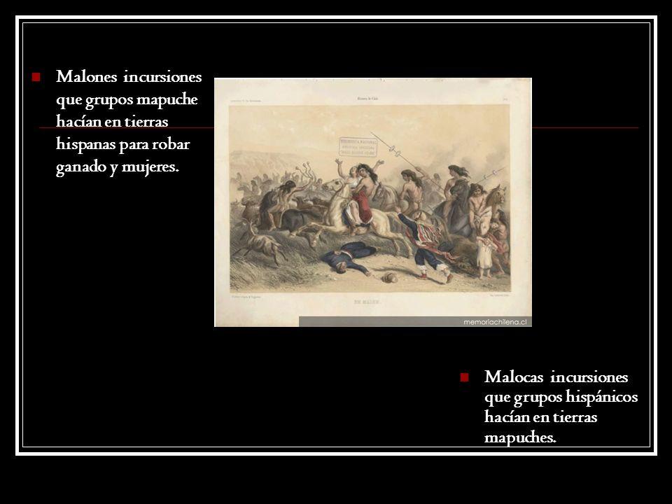 Malones incursiones que grupos mapuche hacían en tierras hispanas para robar ganado y mujeres.