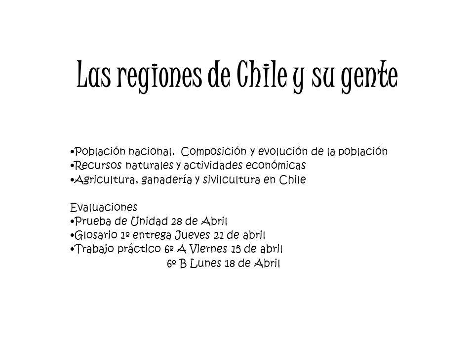 Las regiones de Chile y su gente