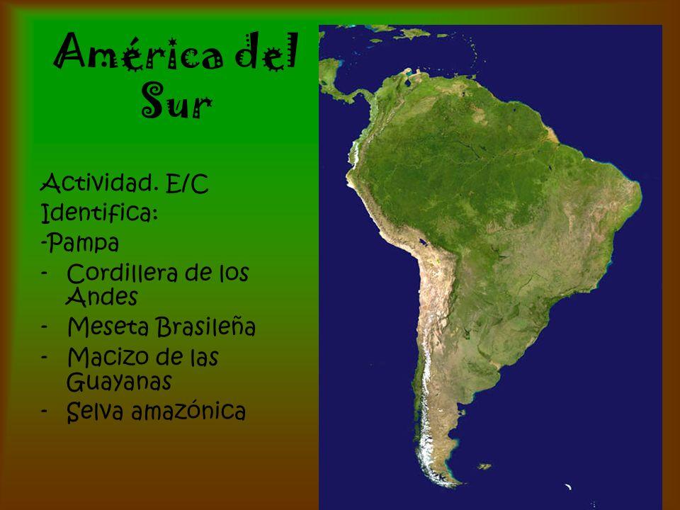 América del Sur Actividad. E/C Identifica: -Pampa