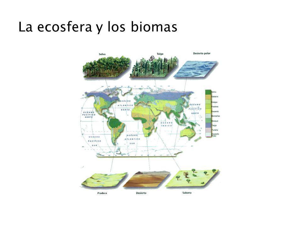 La ecosfera y los biomas