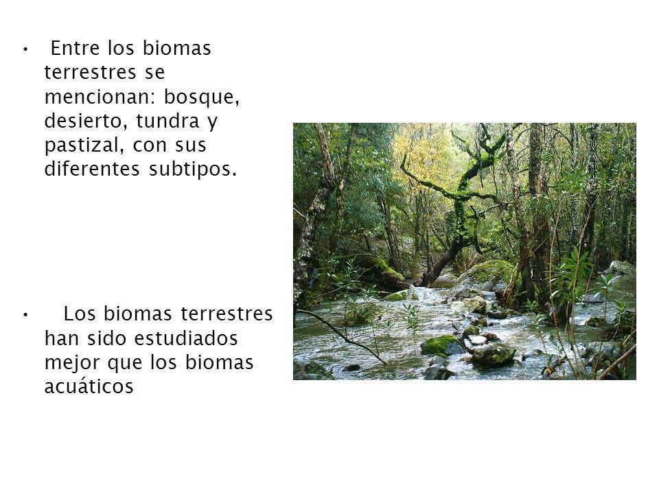 Entre los biomas terrestres se mencionan: bosque, desierto, tundra y pastizal, con sus diferentes subtipos.