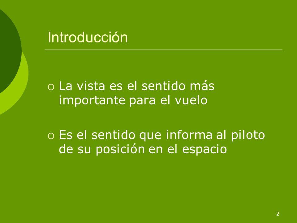 Introducción La vista es el sentido más importante para el vuelo