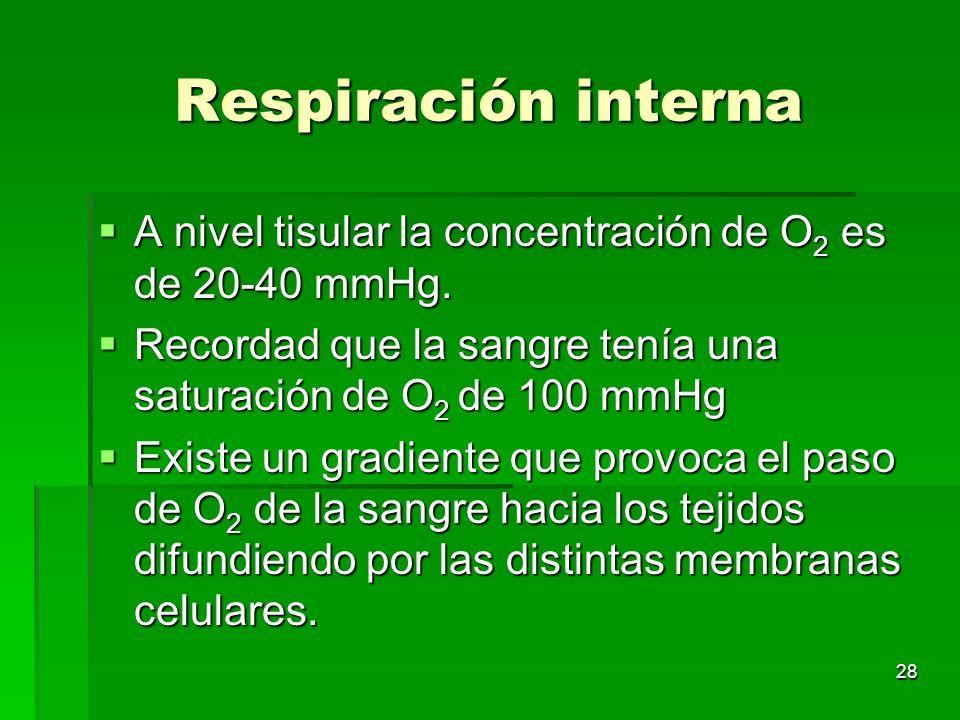 Respiración interna A nivel tisular la concentración de O2 es de 20-40 mmHg. Recordad que la sangre tenía una saturación de O2 de 100 mmHg.