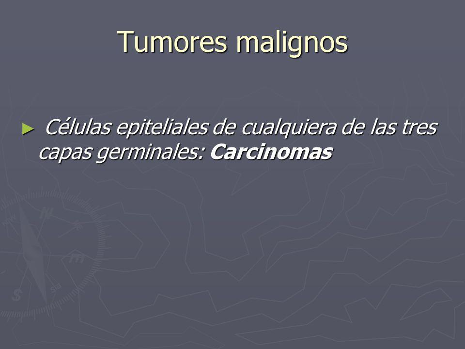 Tumores malignos Células epiteliales de cualquiera de las tres capas germinales: Carcinomas