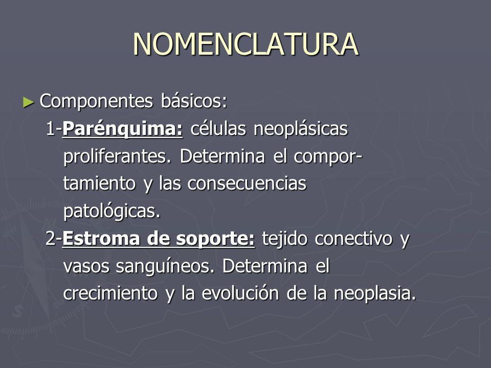 NOMENCLATURA Componentes básicos: 1-Parénquima: células neoplásicas