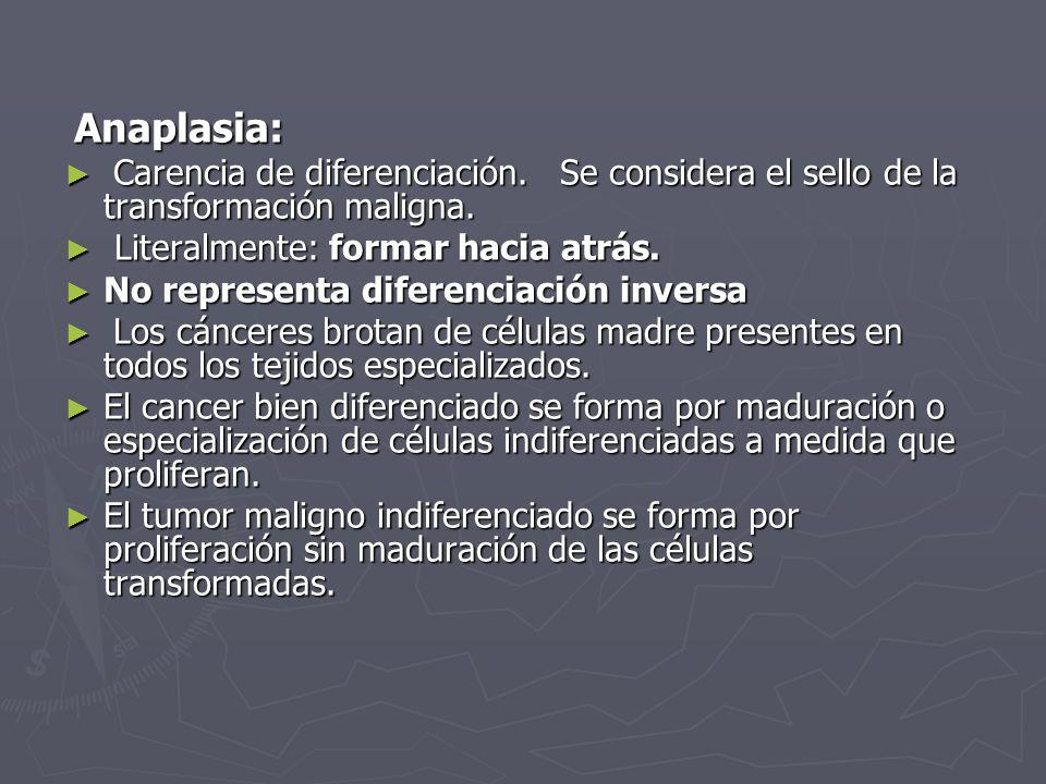 Anaplasia: Carencia de diferenciación. Se considera el sello de la transformación maligna. Literalmente: formar hacia atrás.
