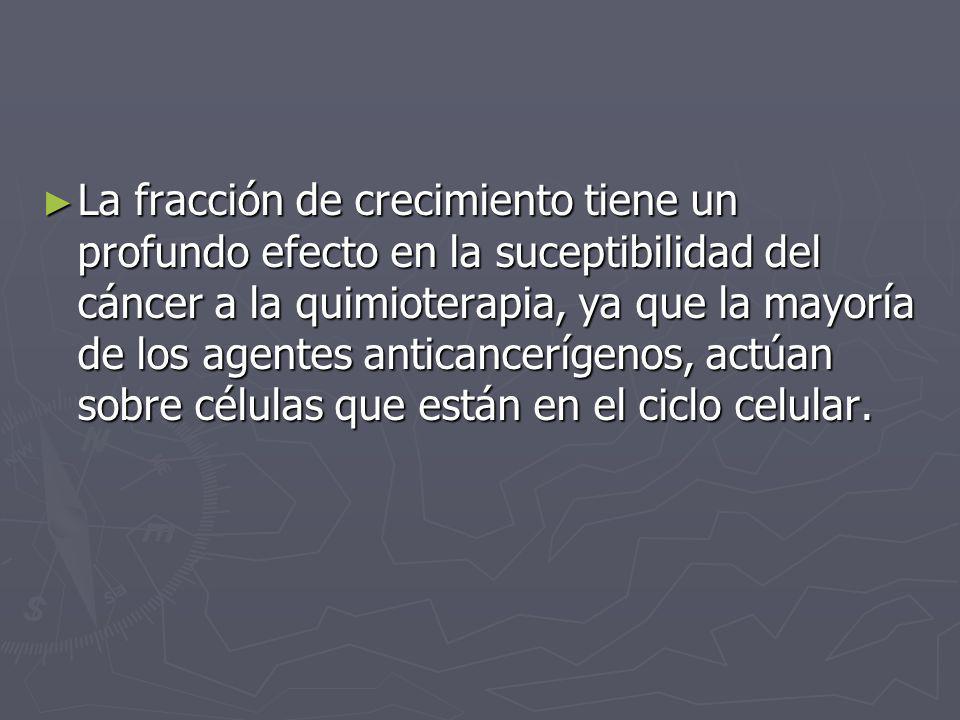 La fracción de crecimiento tiene un profundo efecto en la suceptibilidad del cáncer a la quimioterapia, ya que la mayoría de los agentes anticancerígenos, actúan sobre células que están en el ciclo celular.