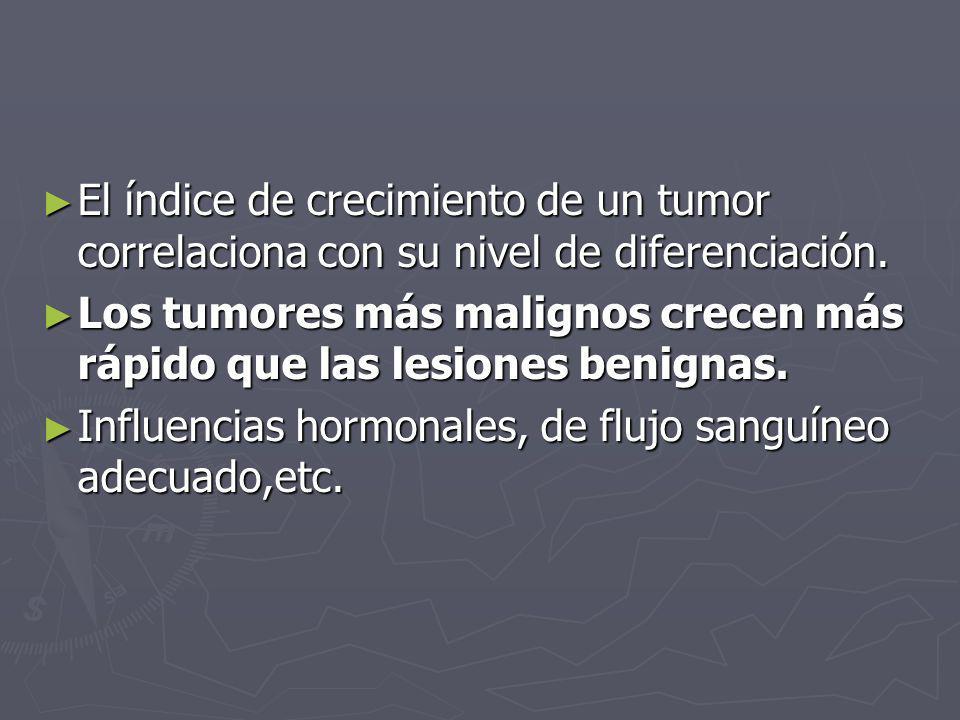 El índice de crecimiento de un tumor correlaciona con su nivel de diferenciación.
