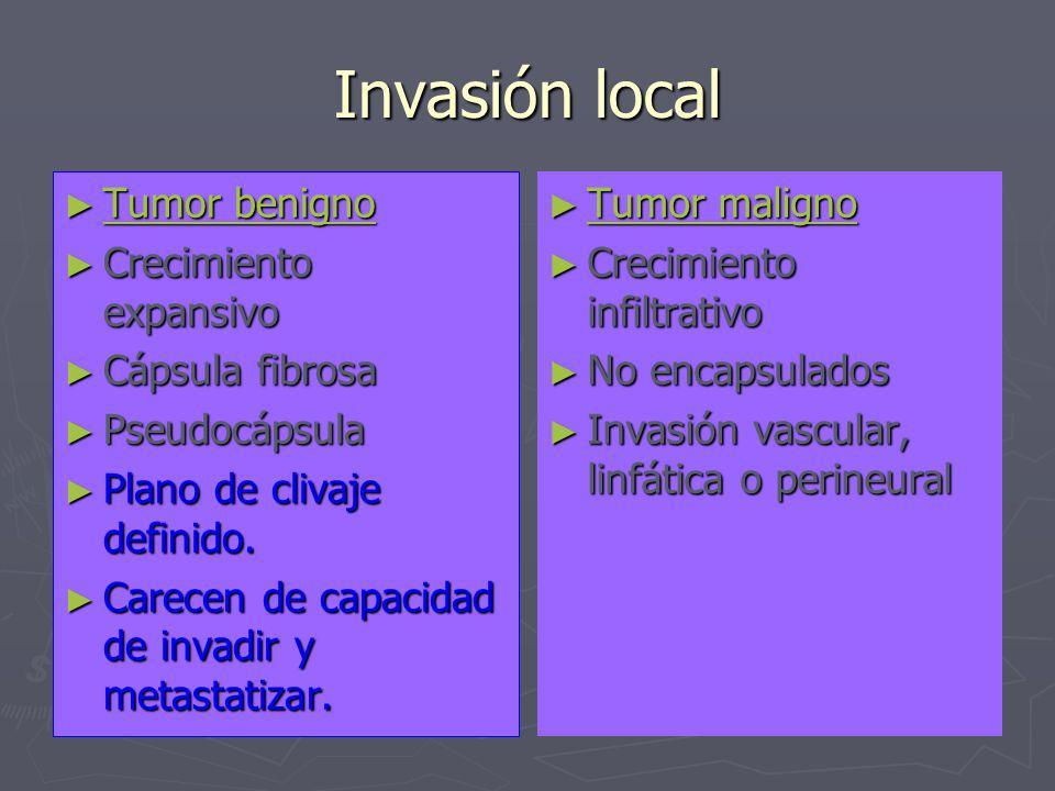 Invasión local Tumor benigno Crecimiento expansivo Cápsula fibrosa