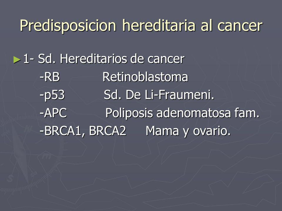 Predisposicion hereditaria al cancer