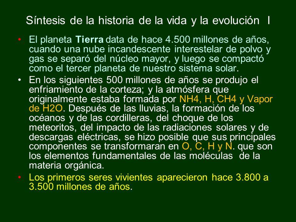 Síntesis de la historia de la vida y la evolución I