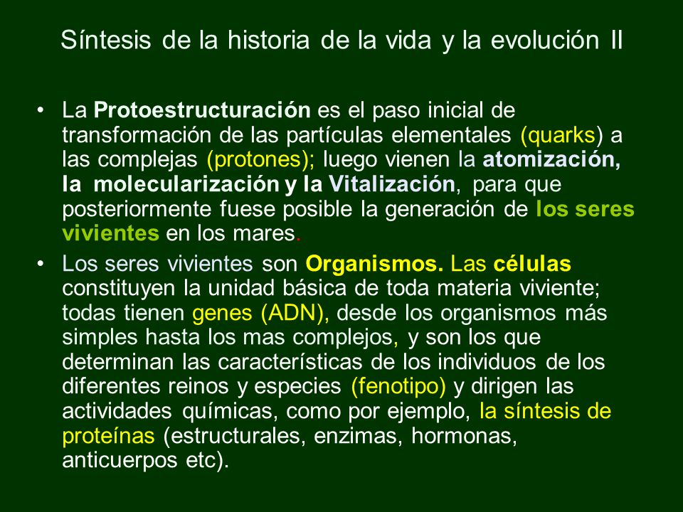 Síntesis de la historia de la vida y la evolución II