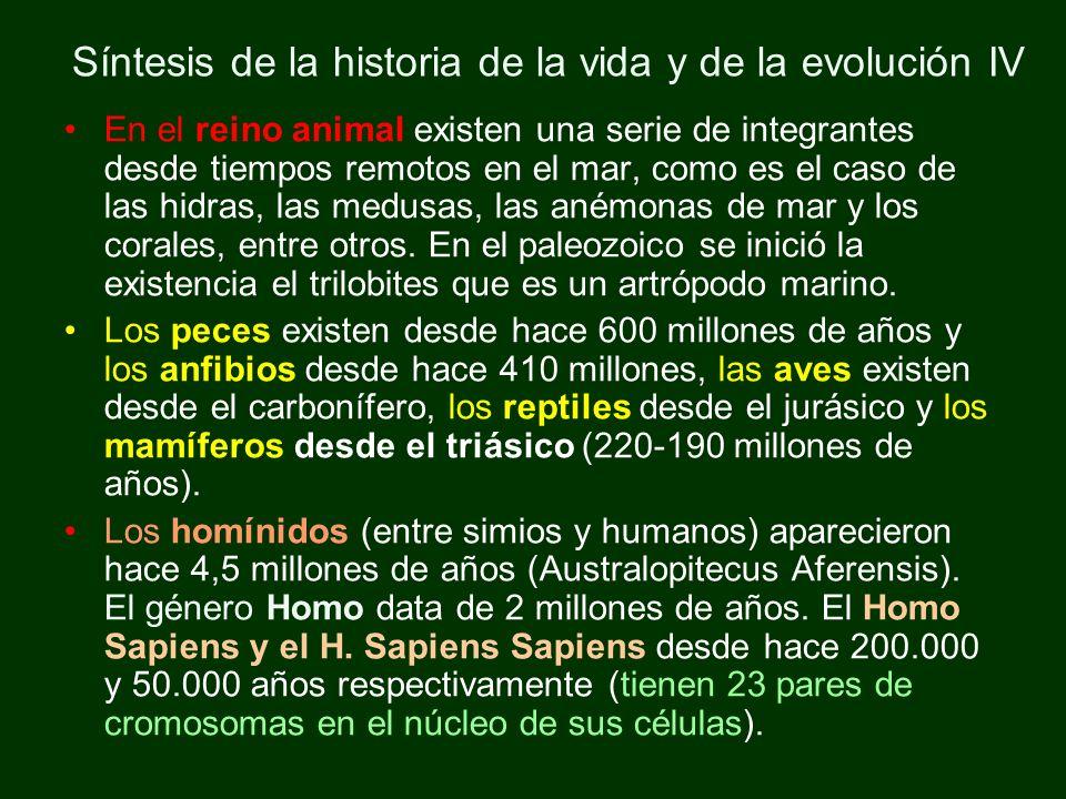 Síntesis de la historia de la vida y de la evolución IV