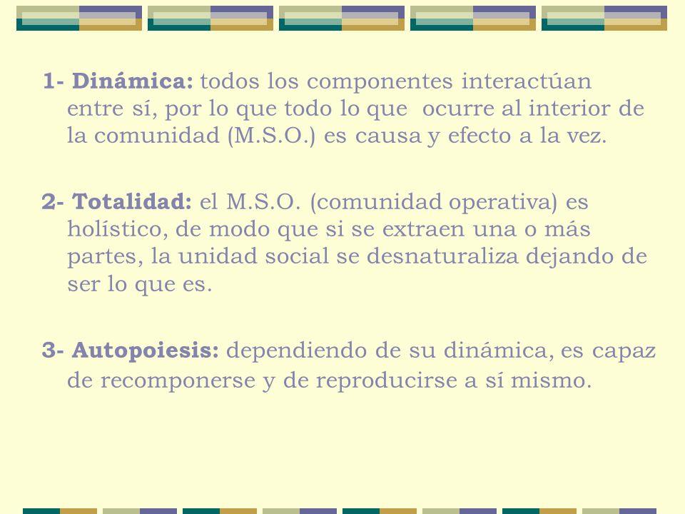 1- Dinámica: todos los componentes interactúan entre sí, por lo que todo lo que ocurre al interior de la comunidad (M.S.O.) es causa y efecto a la vez.