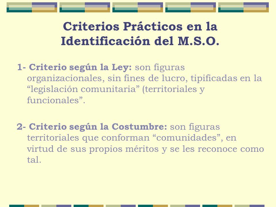 Criterios Prácticos en la Identificación del M.S.O.