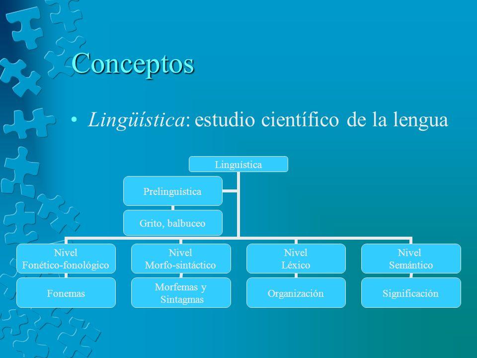 Conceptos Lingüística: estudio científico de la lengua