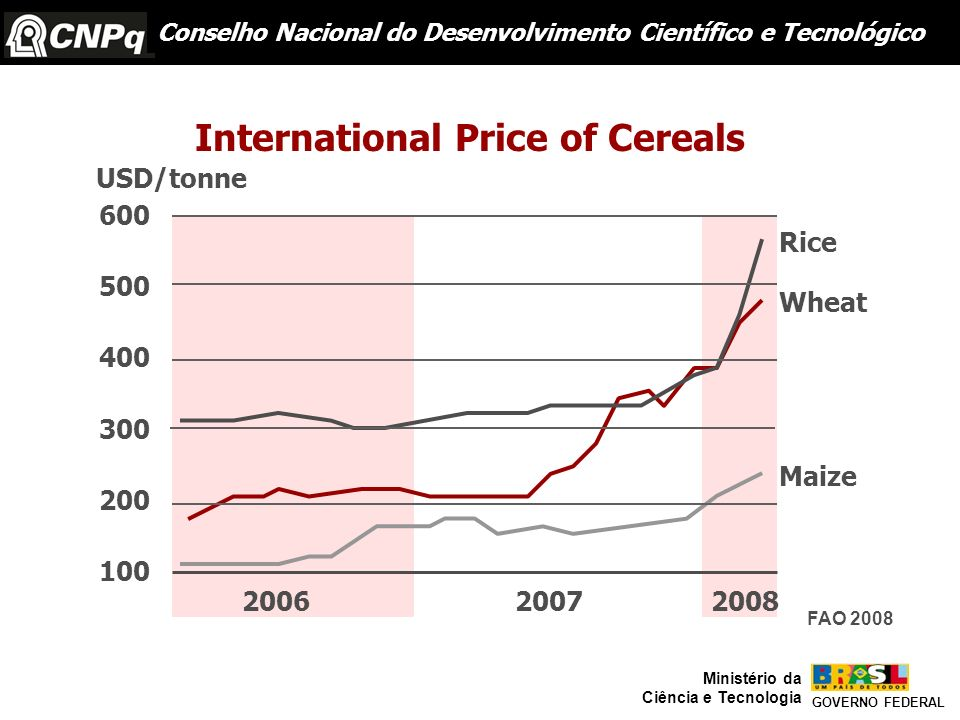 International Price of Cereals