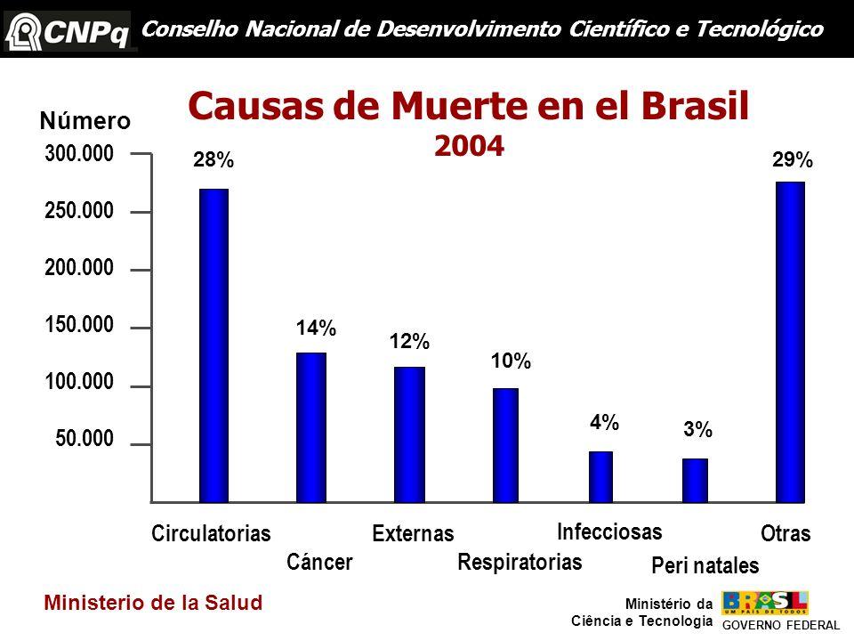 Causas de Muerte en el Brasil
