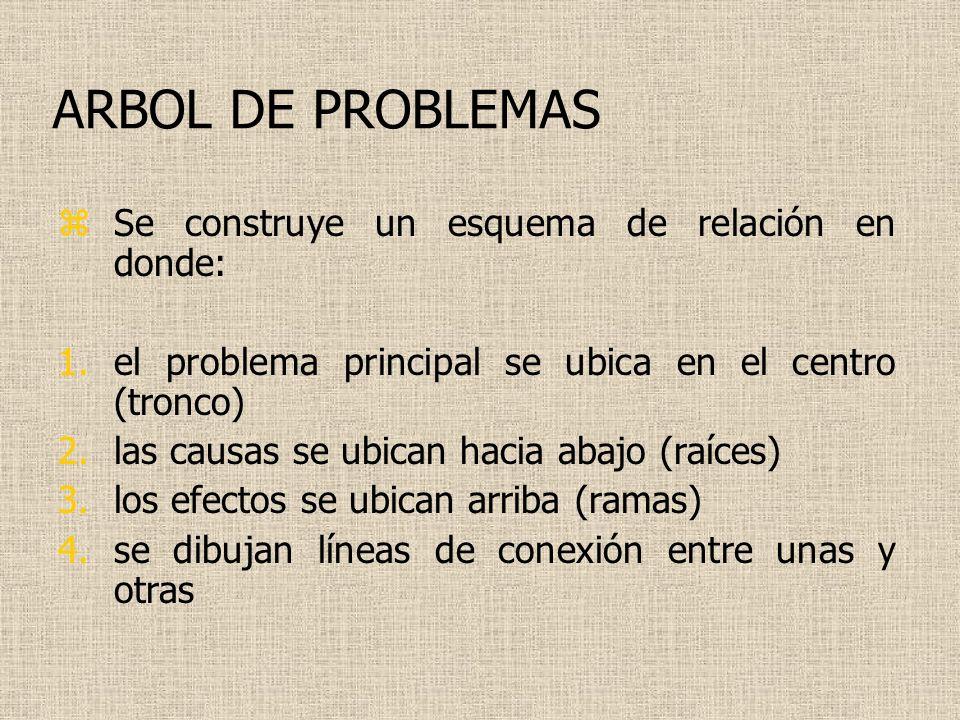 ARBOL DE PROBLEMAS Se construye un esquema de relación en donde: