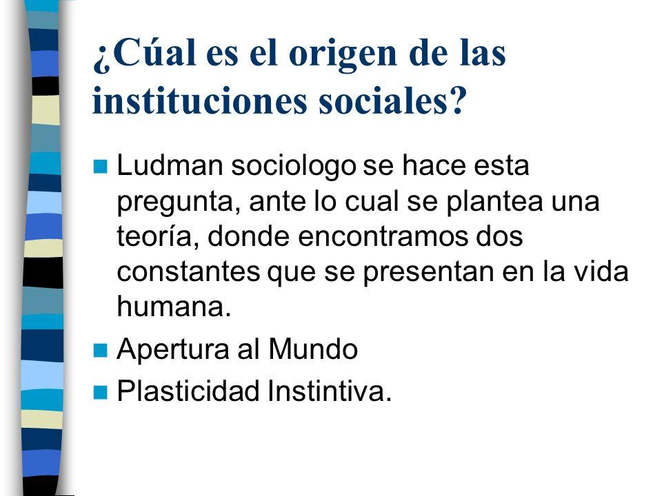 ¿Cúal es el origen de las instituciones sociales