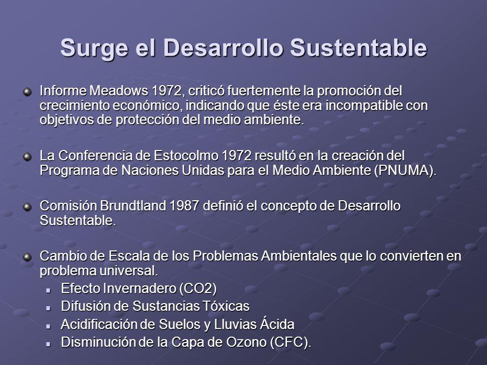 Surge el Desarrollo Sustentable