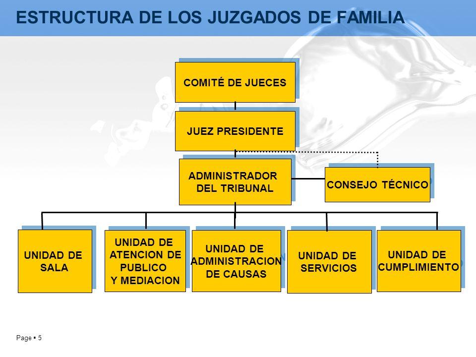 ESTRUCTURA DE LOS JUZGADOS DE FAMILIA