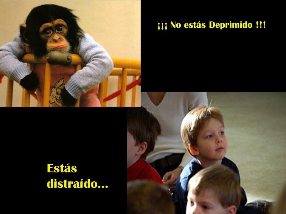 ¡¡¡ No estás Deprimido !!! Estás distraído…