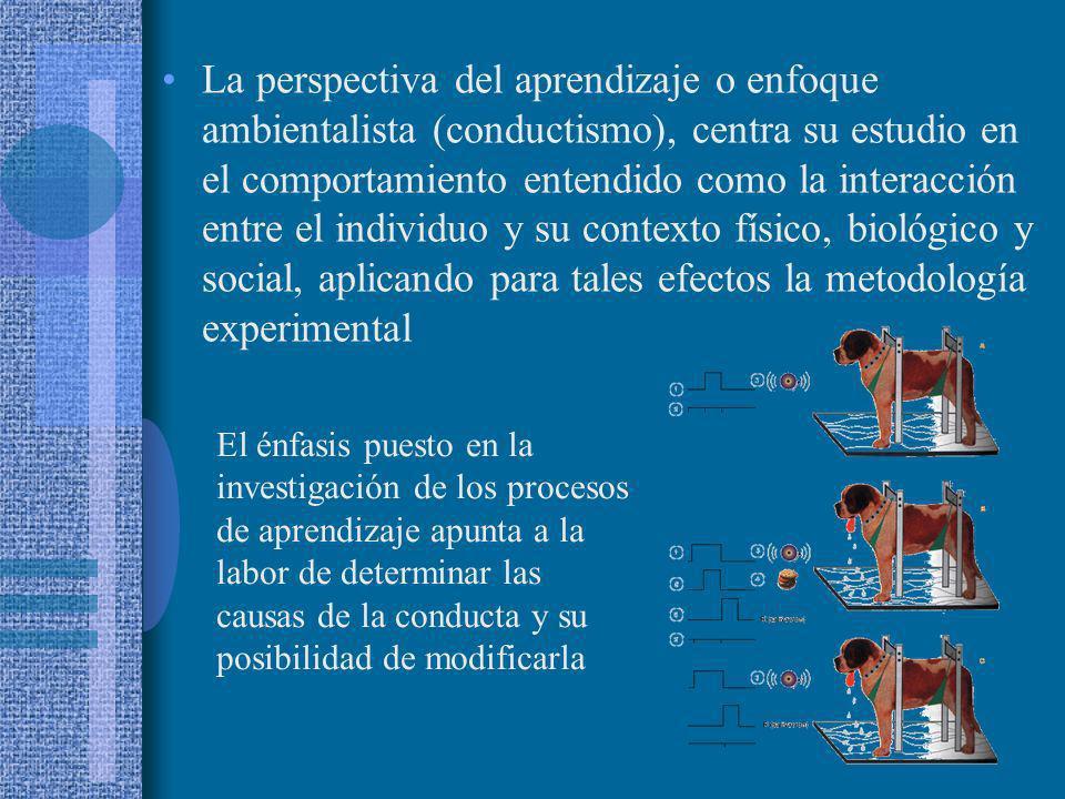 La perspectiva del aprendizaje o enfoque ambientalista (conductismo), centra su estudio en el comportamiento entendido como la interacción entre el individuo y su contexto físico, biológico y social, aplicando para tales efectos la metodología experimental