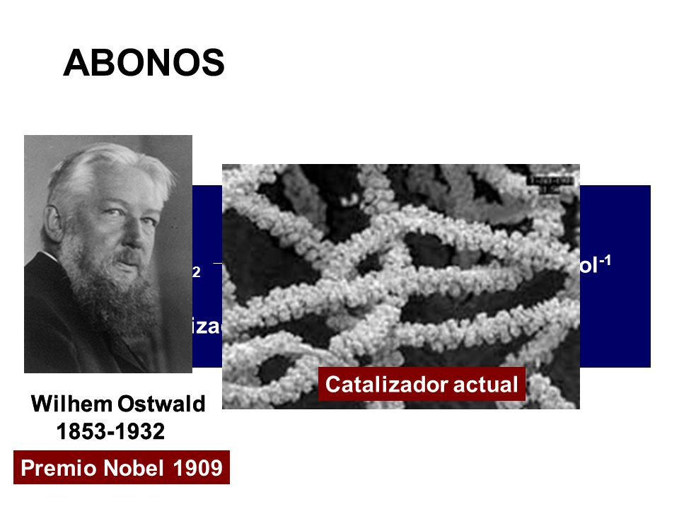 ABONOS Wilhem Ostwald 1853-1932 Premio Nobel 1909 Wilhem Ostwald