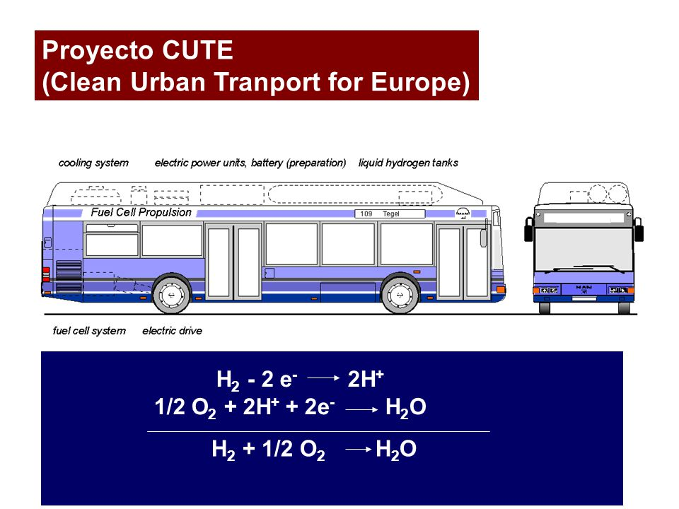 (Clean Urban Tranport for Europe)