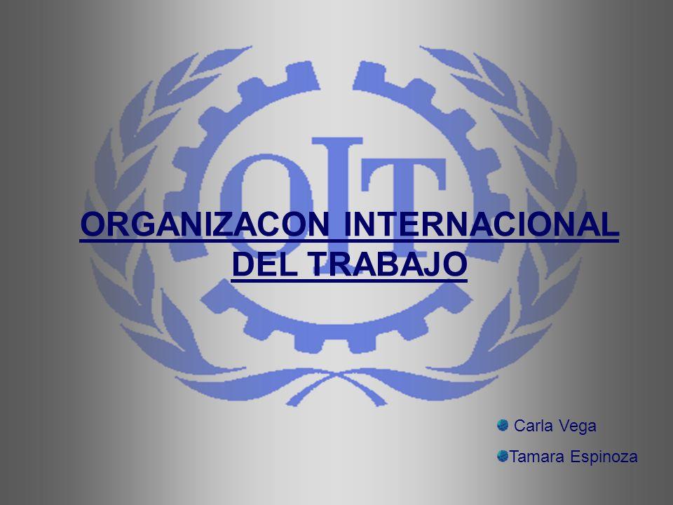 ORGANIZACON INTERNACIONAL DEL TRABAJO