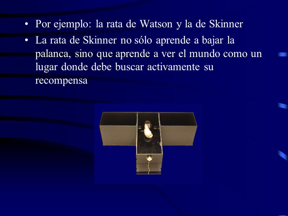 Por ejemplo: la rata de Watson y la de Skinner